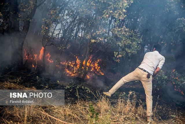آتش سوزی 9 هکتاری در سطح مراتع و جنگل های گیلان