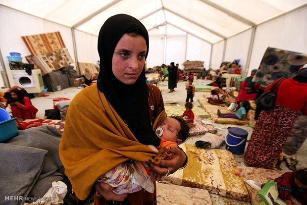 شماری از پناهجویان افغانستانی ازآلمان به کشور خود بازگردانده شدند