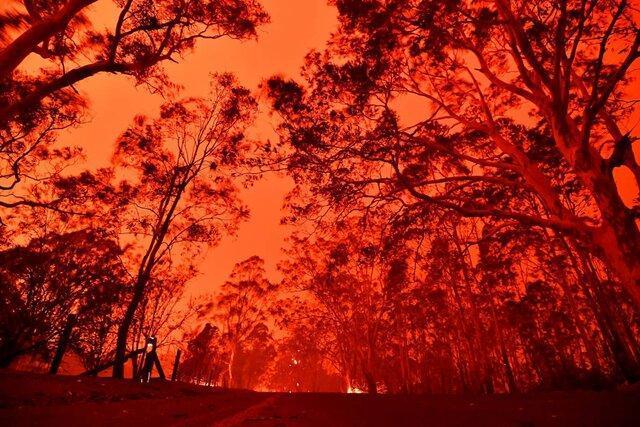 دنیاِ پس از آتش سوزی استرالیا چگونه خواهد بود؟
