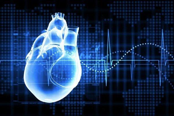 مدل جدید پیشگیری و درمان بیماری های قلبی عروقی ارائه شد