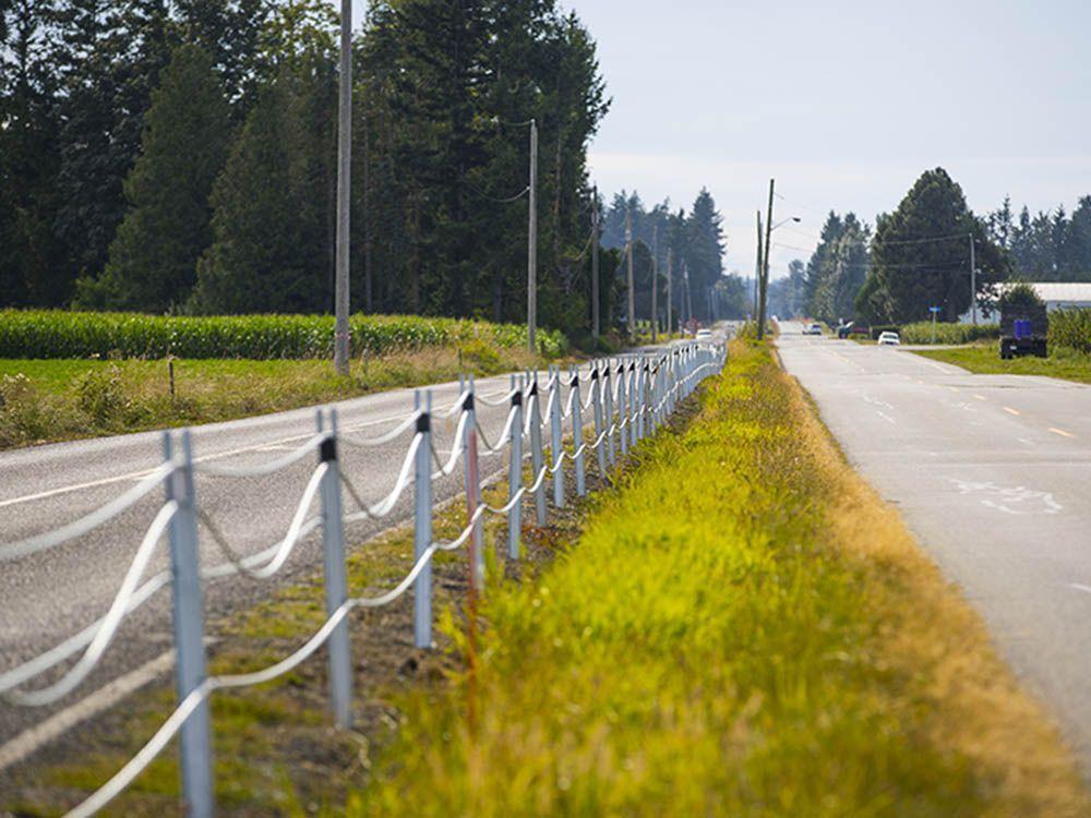 شگفتی ونکووری ها از ایجاد حصار کابلی در مرز امریکا