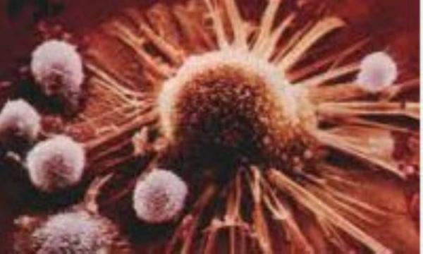 ژن های سرکوبگر سرطان
